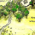 100 Aker Wood & the Acorn