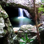 Natural Bridge, Springbrook, Queensland - Photo