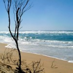 Pacific Ocean - Looking East