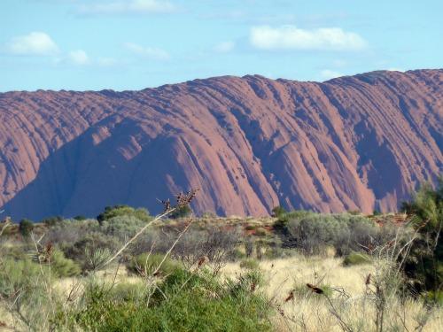 Uluru Ayers Rock Australia image