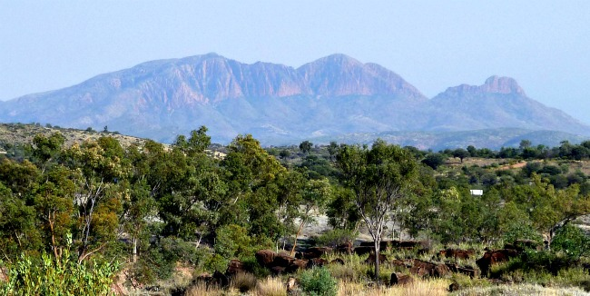 Image: Mt Sonder