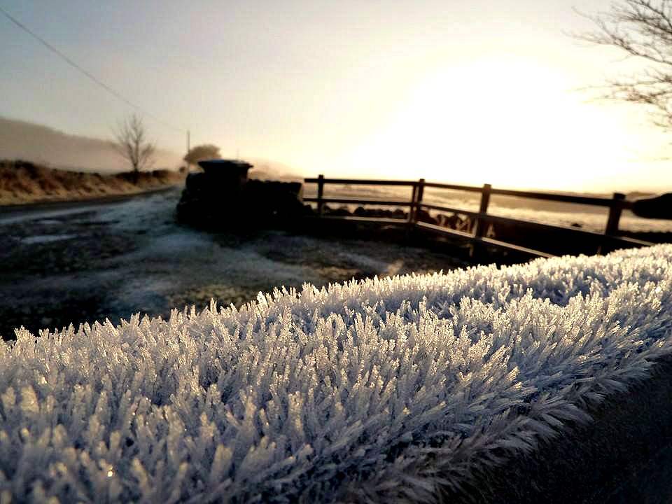 Hoar frost on the top of a gate in Scptland